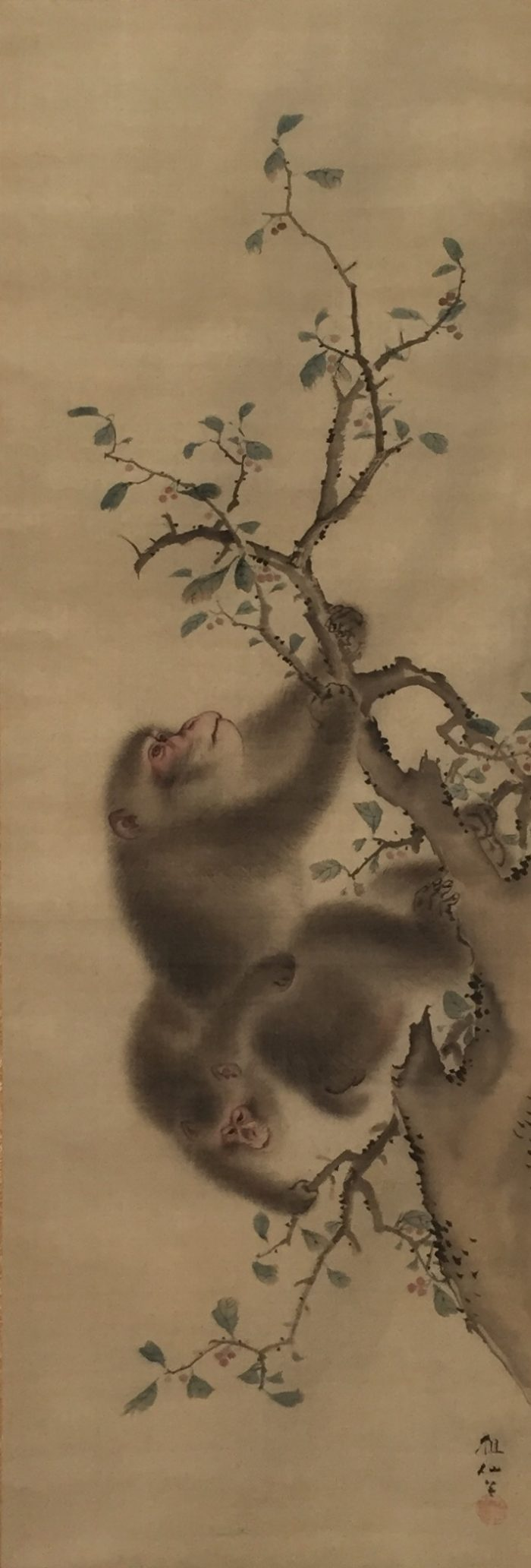 Two Monkeys Hanging From Branches. Mori Sosen (1747-1821).